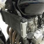 Honda CB600 Hornet
